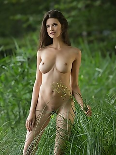 the charm water  baby doll femjoy pictures femjoy pictures for free