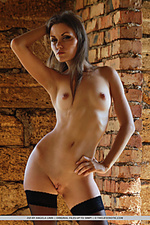 Roxio greets her lover home with a full view of her womanly physique with ever-erect breasts, well-toned torso, and shapely legs.